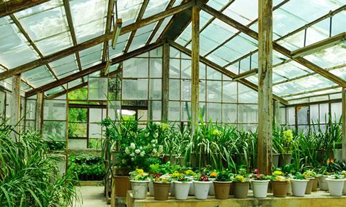 Greenhouses image